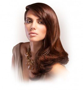 organic colour systems hair treatments